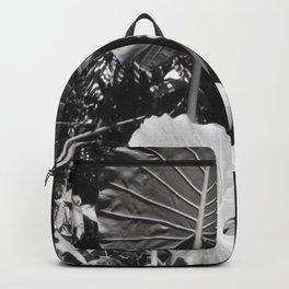 Prehistoric Gardens Backpack