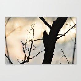 Bird watching Sunset Canvas Print