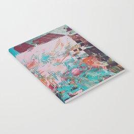 DRMTXSTR Notebook