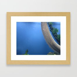 Electric Eel 1 Framed Art Print