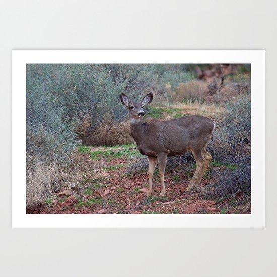 Zion Deer Art Print