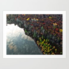 Dry Autumn Forest from Bird's eyes Art Print
