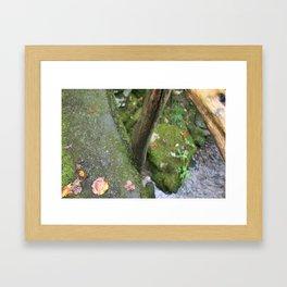Stone Trails Framed Art Print