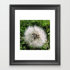 Blue Ridge Parkway Framed Art Print