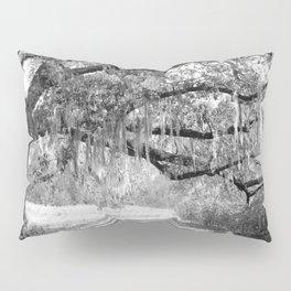 New Orleans Oak Tree Pillow Sham