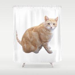 Neighbourhood cat Shower Curtain