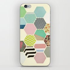 Florals and Stripes iPhone & iPod Skin