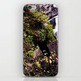 Cameron Falls 2 iPhone Skin