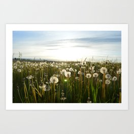 Flowers In These Weeds Art Print