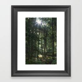 Early Autumn Sunrise Framed Art Print