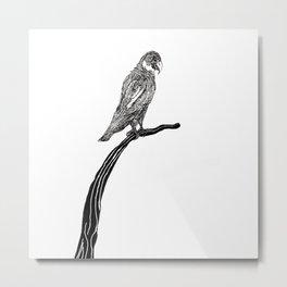 Perch Metal Print