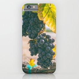 Ripen iPhone Case