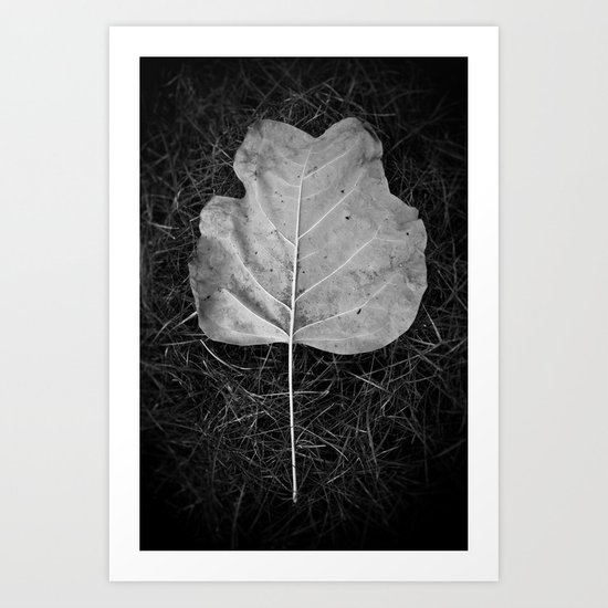 """The fall of a leaf is a whisper to the living"" Art Print"