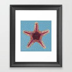 Sea Star 2 Framed Art Print