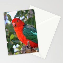 Australian King Parrot Stationery Cards