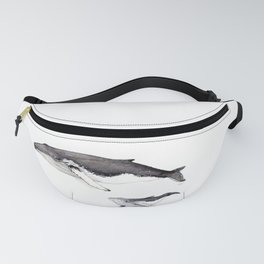 North Atlantic Humpback whale with calf Fanny Pack