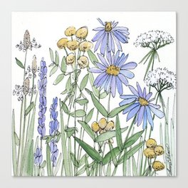Asters and Wild Flowers Botanical Nature Floral Canvas Print
