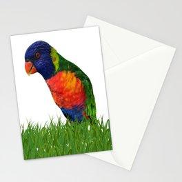 Lorikeet Bird Art Stationery Cards