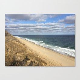 beach view  vanishing shore line Canvas Print