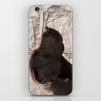 labrador iPhone & iPod Skins featuring black Labrador by Doug McRae