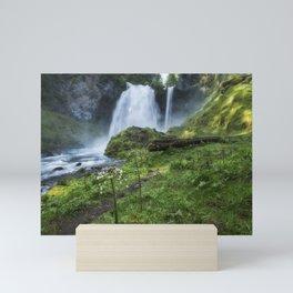 Sahalie Falls No. 2 Mini Art Print