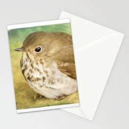 Patiently Waiting - Bird Art Stationery Cards