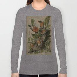 American robin Long Sleeve T-shirt