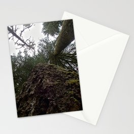 Look Up!   Stationery Cards