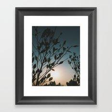 Oasis (II). Framed Art Print