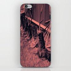 7Giants iPhone & iPod Skin