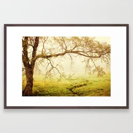 Horseshoe Trail Framed Art Print