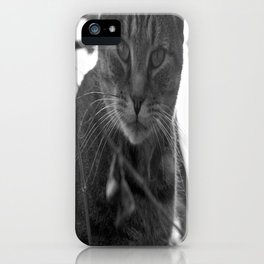 Winter Stare iPhone Case