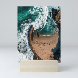 Seal Cove, Aerial Beach Photograph Mini Art Print