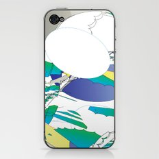 Color #2 iPhone & iPod Skin