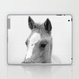 Baby Horse, Farm Animal Print Laptop & iPad Skin