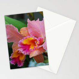 A Prominent Star- horizontal Stationery Cards