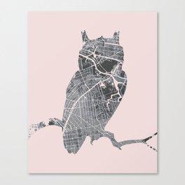 Street owl Canvas Print