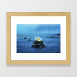 Flower Island Framed Art Print