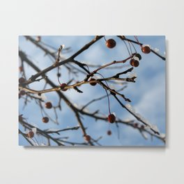 chilly Metal Print