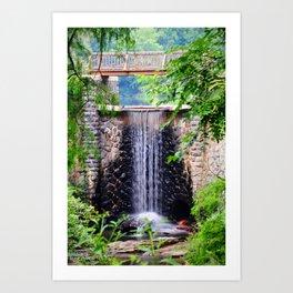 Biltmore Waterfall Art Print