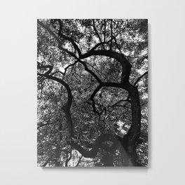 Om Tree Metal Print