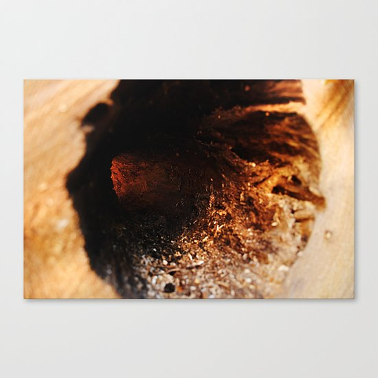 Core Canvas Print
