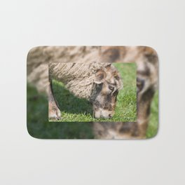 Single adult sheep eating grass Bath Mat