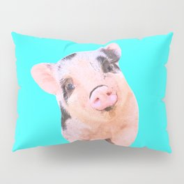 Baby Pig Turquoise Background Pillow Sham