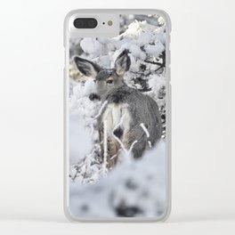 Secret Winterland Clear iPhone Case