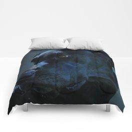 Midnight Blue Comforters