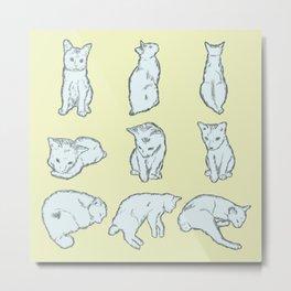 Cat's daily life Metal Print