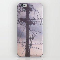 colony iPhone & iPod Skin