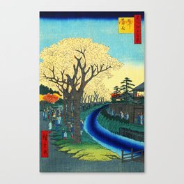 Cherry Blossoms on the Tama River Canvas Print