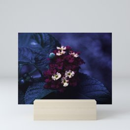 Purples Mini Art Print